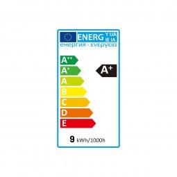 Smart LED bulb 9W Change of white (CCT)