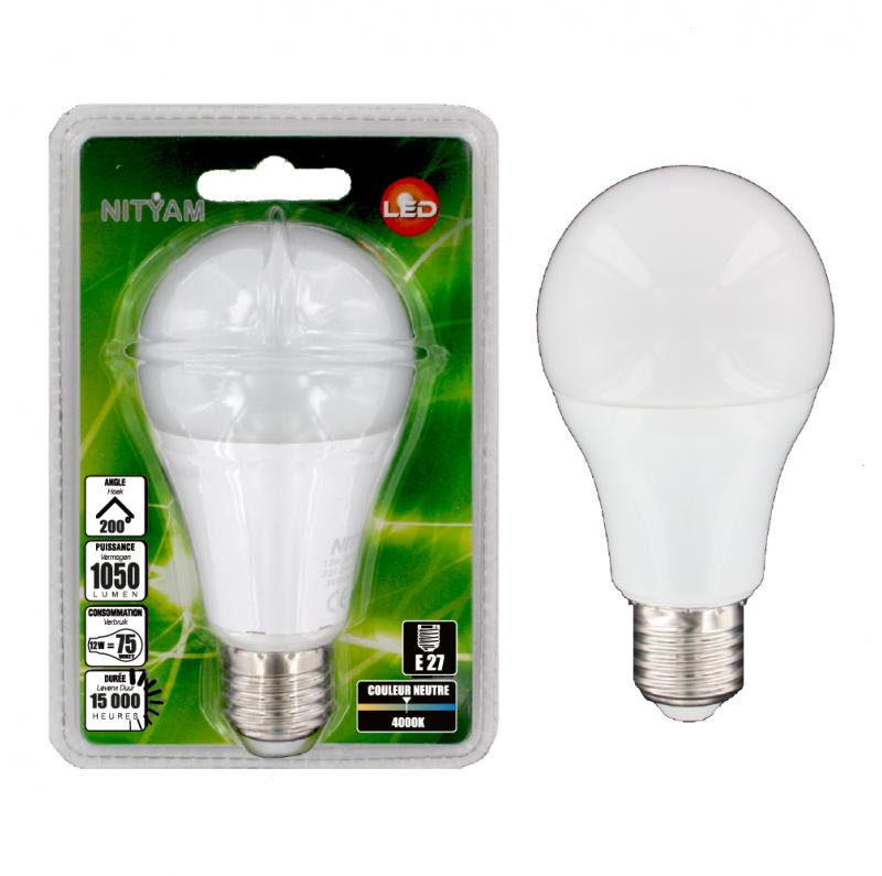ampoule led globe standard 12w culot e27 ampoule led nityam nityam. Black Bedroom Furniture Sets. Home Design Ideas