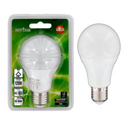 Ampoule LED globe standard 15W Culot E27